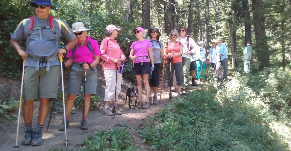 Hike at Summit Park